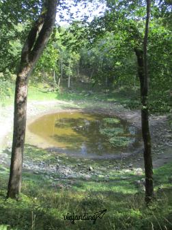 El cráter Kaali