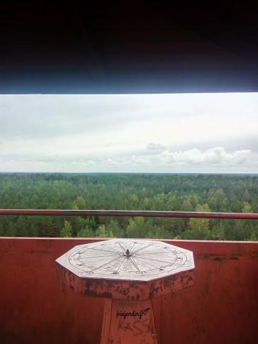 La vista desde la torre mirador de Viidumae