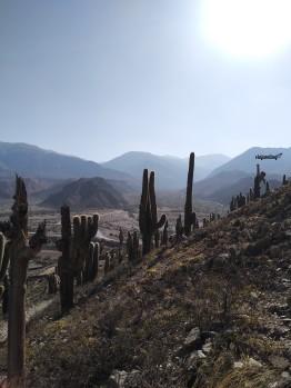 La vista desde el sendero